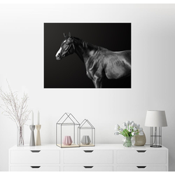 Posterlounge Wandbild, Budjonny (Pferd) 90 cm x 70 cm