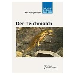 Der Teichmolch. Wolf-Rüdiger Große  - Buch