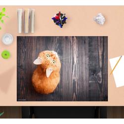 cover-your-desk.de Schreibtischaufsatz Schreibtischunterlage für Kinder – Orange Katze – 60 x 40 cm – aus hochwertigem Vinyl, (1-St)