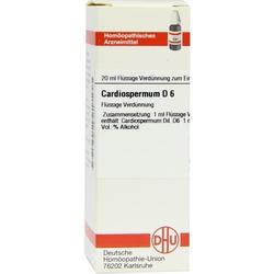 CARDIOSPERMUM D 6