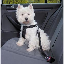 Wandel- en Autoharnas met Gordel voor de hond  XS