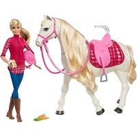 Barbie Traumpferd und Puppe (FRV36)