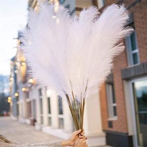 Pampasgras xxl, Weiß Pampasgras, 5 Stück 120 cm(47'', 3.9ft), Weiß Künstlich Pampasgras Groß , Flauschig Pampasgras, für Party und Tisch Blumenarrangement Dekoration (Weiß)