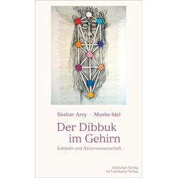 Der Dibbuk im Gehirn als Buch von Shahar Arzy/ Moshe Idel