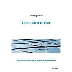 Sollbruchstellen der Seele. Jens Mergenthaler  - Buch