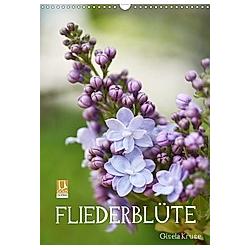 Fliederblüte (Wandkalender 2021 DIN A3 hoch)