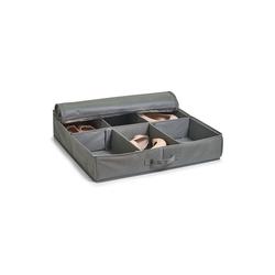HTI-Living Aufbewahrungsbox Schuhaufbewahrungsbox Flexibel (1 Stück), Aufbewahrungsbox