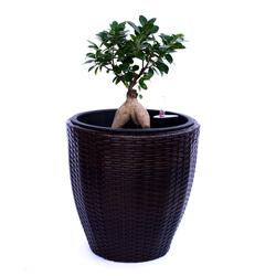 Blumenkübel Polyrattan D37xH37cm coffee braun