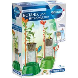 Erkunde die Botanik und Hydrokultur (Experimentierkasten)