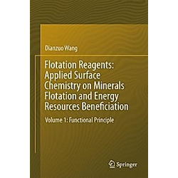 Flotation Reagents: Applied Surface Chemistry on Minerals Flotation and Energy Resources Beneficiation. Dianzuo Wang  - Buch