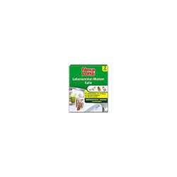NEXA LOTTE Lebensmittel-Motten Falle, 2 Stück 2 St