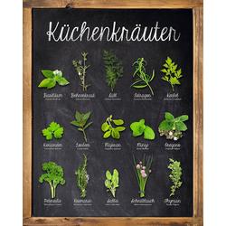 Deco-Panel »Küchenkräuter«, Bilder, 896785-0 grün 40x50 cm grün