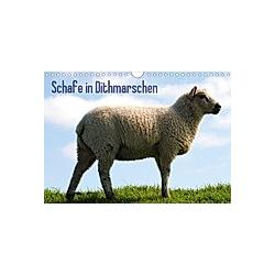 Schafe in Dithmarschen (Wandkalender 2021 DIN A4 quer)