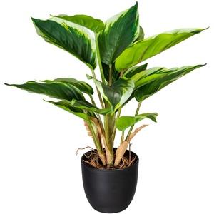 Künstliche Hosta im Topf  14 Blätter  35 cm