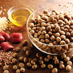 alsa-nature Nieren-Schonkost Trockenfutter, 2 x 12 kg, Hundefutter trocken