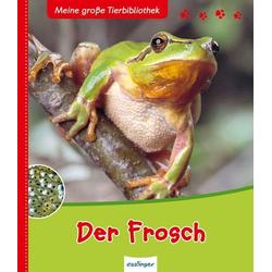 Der Frosch als Buch von Paul Starosta
