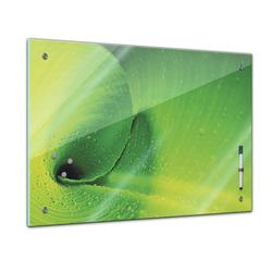 Bilderdepot24 Glasbild, Memoboard - Pflanzen & Blumen - Bananenblatt 60 cm x 40 cm
