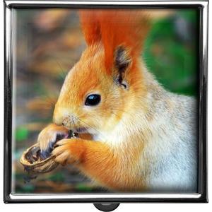 metALUm Pillendose quadratisch 2 Fächer Eichhörnchen #0008