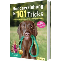 Hundeerziehung in 101 Tricks