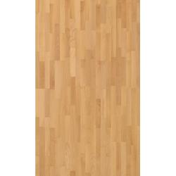 PARADOR Parkett Basic Natur - Buche, lackiert, Packung, ohne Fuge, 2200 x 185 mm, Stärke: 11,5 mm, 4,07 m²