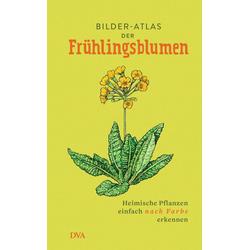 Bilder-Atlas der Frühlingsblumen als Buch von