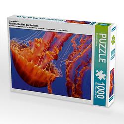 Quallen. Die Welt der Medusen Lege-Größe 64 x 48 cm Foto-Puzzle Bild von Elisabeth Stanzer Puzzle