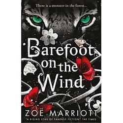 Barefoot on the Wind. Zoë Marriott  - Buch