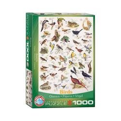 EUROGRAPHICS Puzzle EuroGraphics 6000-1259 Vögel 1000-Teile Puzzle, Puzzleteile bunt