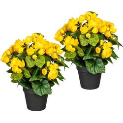 Künstliche Zimmerpflanze Eleonore Begonien, DELAVITA, Höhe 28 cm, 2er Set gelb 18 cm x 28 cm