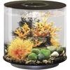 OASE Oase 72062 Aquarium 15l mit LED-Beleuchtung