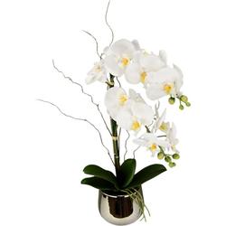 Kunstpflanze Phalaenopsis im Topf Phalaenopsis, I.GE.A., Höhe 45 cm weiß