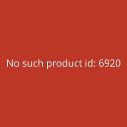 Anycubic Mega X 3D-Drucker
