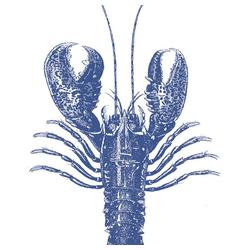 PPD Papierserviette Lobster Marine 20 Stück 33 cm