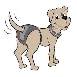 Ruby Care Hundeschutzhose