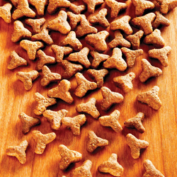 alsa-nature Basic Trockenfutter, 4 x 1,5 kg, Katzenfutter trocken