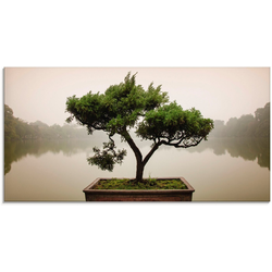 Artland Glasbild Chinesischer Bonsaibaum, Bäume (1 Stück) 100 cm x 50 cm