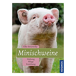 Minischweine. Elke Striowsky  - Buch