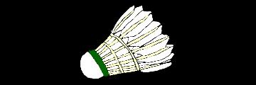 badmintonshop-freiberg.de