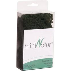 Mininatur 996-22 Bodendecker Immergrün (dunkel)