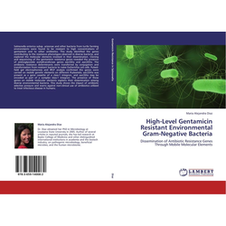 High-Level Gentamicin Resistant Environmental Gram-Negative Bacteria als Buch von Maria Alejandra Diaz