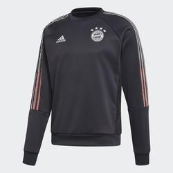 FC Bayern München Travel Sweatshirt