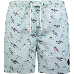 WLD Wavesource Shorts Herren in pinguin aop, Größe L pinguin aop L