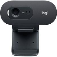 Logitech C505e 1280 x 720 Pixel USB