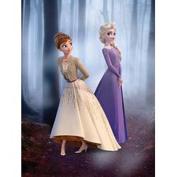 Komar Poster Frozen Wood Walk, Disney 30 cm x 40 cm
