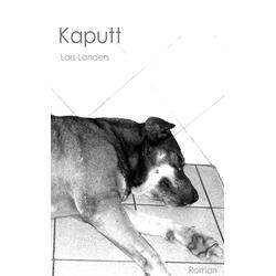 Kaputt als Buch von Lars Landers