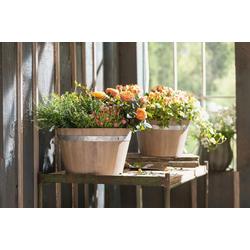 HomeLiving Blumentopf Holz
