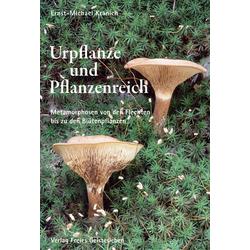 Urpflanze und Pflanzenreich als Buch von Ernst-Michael Kranich