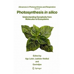 Photosynthesis in Silico - Buch