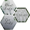 Bilder Hexagon - Alu-Dibond-Silbereffekt Plantlady is the new Catlady (3er Set) silberfarben