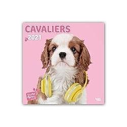 Cavaliers - Cavalier King Charles Spaniels 2021